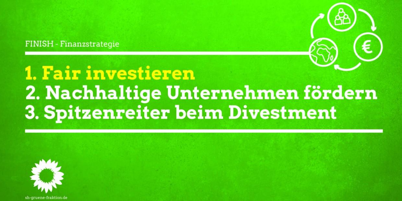 Nachhaltige Finanzstrategie FINISH
