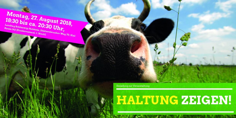 Kuh auf der Weide - Haltung zeigen