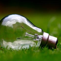 Glühbirne auf Rasen