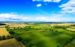 Aufnahme von einer Felderlandschaft von oben