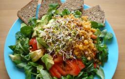 Gemischter Salat auf flachem Teller mit Vollkorn